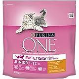 Purina One - Gato Junior rico en Pollo y Cereales Integrales, 1,5 Kg