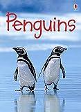Penguins (Usborne Beginners) (Beginners Series)