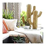 Cactus de esparto decorativo
