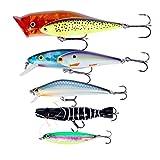 RUNCL Fishing Lure, Hard Lure, Popper Bait Minnow Bait Pencil Bait Jigging Bait Freshwater Saltwater (Color01 (set of 5))