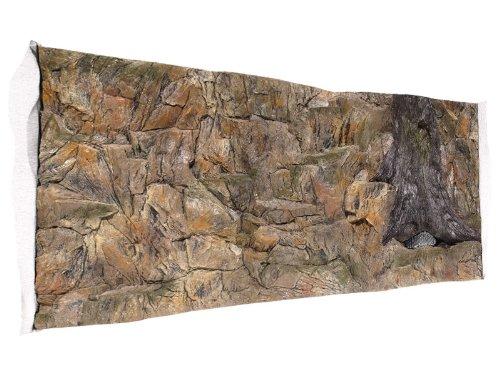Aquarium Rückwand 3D Standard 100x60cm bei Robizoo