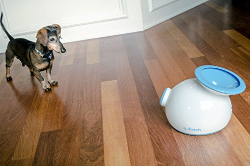 iFetch - Automatic Ball Launcher for your Dog! 3