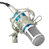 Powerpak BM 800 Silica Gel Professional Condenser Microphone with Metal Shock Mount (Blue)