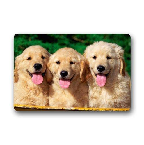 Custom Cute Golden Retriever Dogs Indoor/outdoor Floor Mat Doormat(40cm X 60cm) -