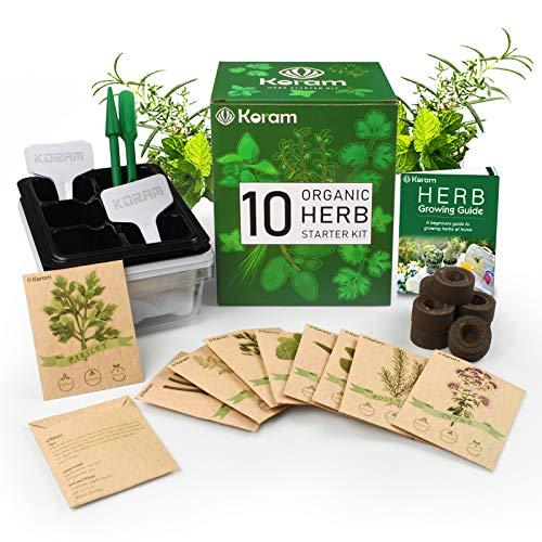 KORAM Kräutergarten Kit Wachsendes Kit Gardening Starter Set 10 Kräuter Wachsen Sie aus Bio-Samen-Kräuter-Kit für den Innenbereich mit allem, was ein Gärtner braucht für wachsende Kräuter Küche Balkon -