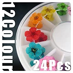 350buy Wheel Dried Dry Flower Nail Art Decorations UV Acrylic by 350buy