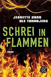 Schrei in Flammen: Kriminalroman