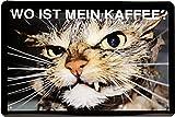 Blechschild Katze Cat' Wo ist mein Kaffee ' 20 x 30cm Reklame Retro Blech 1227