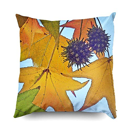 Sweet Gum Tree (Yuerb kissenbezüge 18X18 Inch Sweet Gum Tree Leaves and Fruit Decorative Throw Pillow Cover,Pillow Cases Cushion Cover for Home Sofa Bedding)