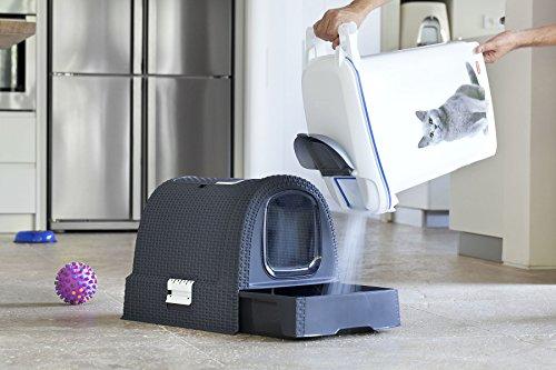 Curver Katzentoilette Sicherheit - 8