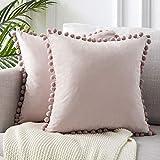 Wosxyeal Fundas para Cojines, Cojín Velvet Cream Cubre Fundas De Almohada Throw Decorativos Cuadrados Suaves para La Sala De Estar del Sofá del Dormitorio, Paquete De 2 Pink 60x60cm
