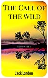 Image de The Call of the Wild: By Jack London : Illustrated (English Edition)