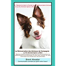 La Réincarnation Animale et La Vie Animale Apres La Mort: Réponses à toutes les questions de votre Coeur!