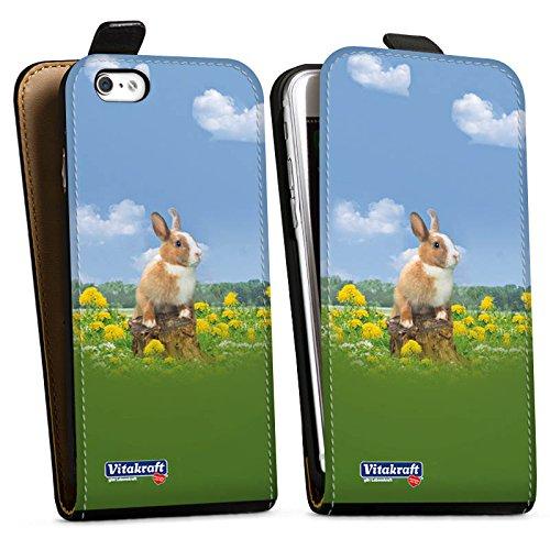 Apple iPhone X Silikon Hülle Case Schutzhülle Häschen Hase Kaninchen Downflip Tasche schwarz