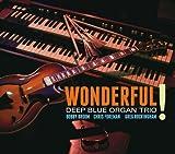 Songtexte von Deep Blue Organ Trio - Wonderful!