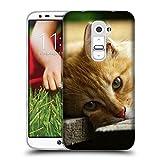 Just Phone Cases Schutz Hülle TPU Case Schutzhülle Silikon Tasche Dünn Transparent // V00004287 Katze liegend auf Holzbrettern // LG G2 D800 D802 D802TA D803 VS980 LS980