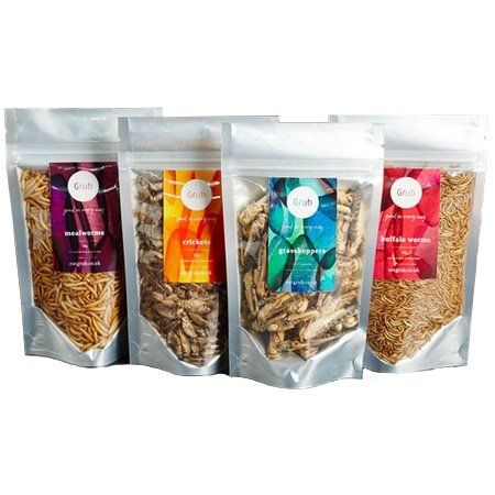 edible-insects-starter-pack