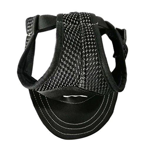 Unbekannt MagiDeal Hundemütze atmungsaktive Hunde Baseballmütze Hut Kappe mit Ohrlöchern für Hunde Welpen Outdoor Sport - Schwarz M