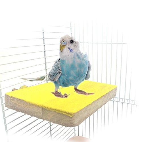 Holz Sitzstange Ständer Plattform Spielzeug Spielplatz Paw Schleifstifte reinigen für Pet Bird Papagei Ara African Greys Wellensittiche Sittiche Sittiche Hamster Gerbil Rat Maus Käfig Zubehör steht Übung Spielzeug (Sittich Käfig Auf Ständer)