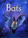 Bats (Usborne Beginners) (Beginners Series)