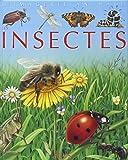 Les Insectes : Pour les faire connaître aux enfants
