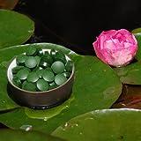 Chlorella pyrenoidosa Tabletten – Premiumqualität 500g zu je 400mg