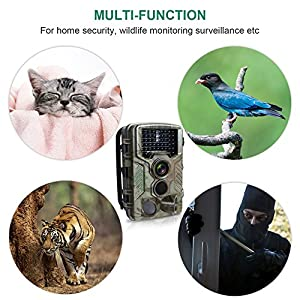 FLAGPOWER Wildlife Hunting Camera, Trail Camera with Night Vision up to 20M/65FT, 2.4 inch Screen 16MP 1080P Full HD include Free 32GB Micro SD Card, IP56 Waterproof Camera with 46 PC IR LEDs