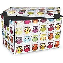 Curver - Scatola portaoggetti decorativa Stockholm, grande, 22 litri, fantasia: gufi, multicolore - Deco Storage Box