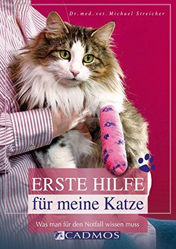 erste-hilfe-fr-meine-katze-was-man-fr-den-notfall-wissen-muss-katzen