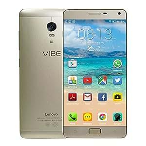 Lenovo Vibe P1 5000mAh 5.5 Pouce FHD Android 5.1 RAM 3GB Octa Core 13.0MP téléphone portable