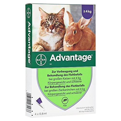 ADVANTAGE 80 mg f. große Katzen (Floh-behandlung Katze)