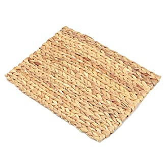 Rosewood Boredom Breaker, Small Animal Activity Toy Chill-n-Chew Mat 7