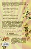 Image de La guérison vibratoire : Êveil énergétique et évolution par les huiles essentielles