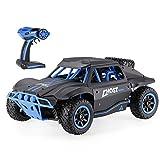 POBD RC ferngesteuertes Auto / Rennfahrzeug mit Höchstgeschwindigkeit 25 km/h, 2,4GHz Fernbedienung, Truck-Maßstab 1/18, 4WD, Off-Road, Monster-Truck, schnell