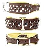 Lovely Lauri Glitzer Strass Hunde Halsband Echt Leder M