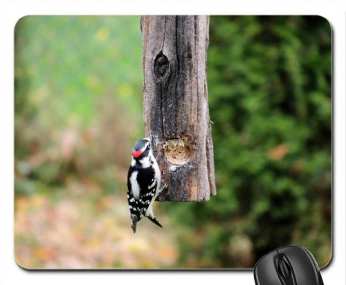 downy-pic-mouse-pad-mousepad-birds-mouse-pad