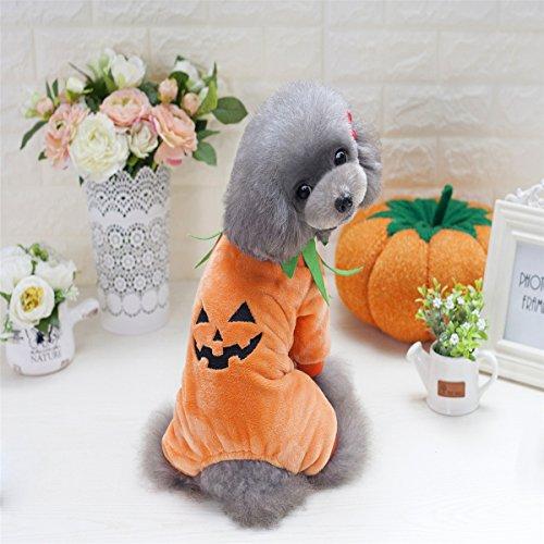 Eizur Haustier Hunde Halloween Kürbis Kostüm Overall lustiger Hunde Outfits Hundekleidung Puppy Kleidung Hund Katze Bekleidung Schlafanzüge Vier-Bein Jumpsuit Haustierkleidung Hund Kleider Größe (Kostüm Französisch Halloween)