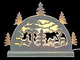 Unbekannt Mini LED Schwibbogen - Waldmotiv - 23 x 15 x 4,5 cm - Original Erzgebirge Schwibbögen - Michael Müller