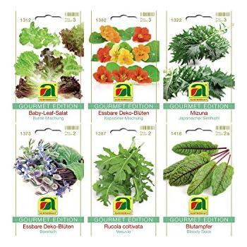 6 sorten gem sesamen sortiment gourmet edition set f r rucola baby leaf salat mizuna. Black Bedroom Furniture Sets. Home Design Ideas