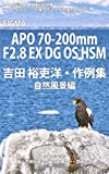 Foton Photo collection samples 036 SIGMA APO 70-200mm F28 EX DG OS HSM Yoshida Yurihiros recent works (Japanese Edition)