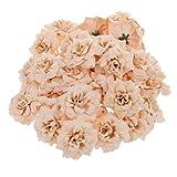 50pcs Künstliche Seide Rosen Blütenköpfe Blumen-Köpfe Hochzeit Parteidekor Bulk - Aprikose