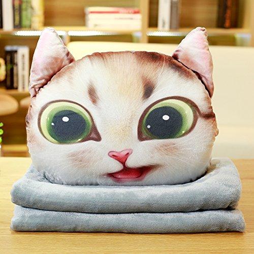 Yancyong Dicke Quilt Kissen Kissen Dual-Use-Büro Mittagessen, Kissen 40 X 40 Cm, Eine Schlechte Braune Katze (Braune Katze Bett)