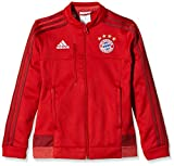 adidas Kinder Jacke FC Bayern München Anthem, True Craft Red F12, 164
