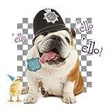Ello Ello Bulldog Pet Pawtrait Card