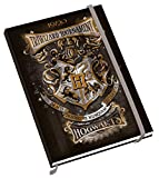 Harry Potter Mid-Year 2019-2020 Diary - Official Academic Diary