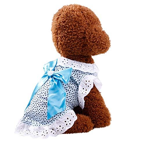 EUZeo Schöne Hund Katze Haustierbekleidung Tupfen Gedruckt mit Bogen Spitzen Patchwork Retro Kleidung Kleiner Hund und Kleine Katze T-Shirts Sweatshirts Hündchen Kätzchen