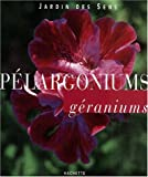 Pélargoniums