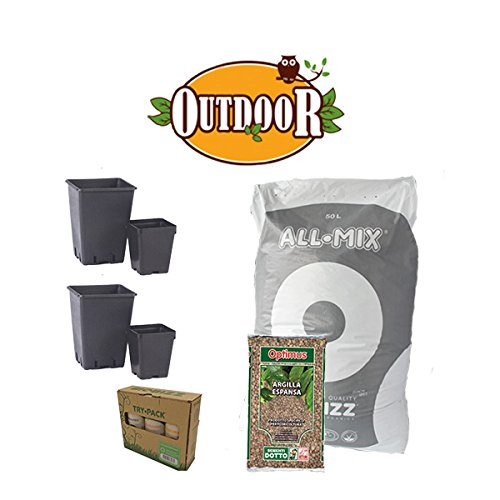 Kit de culture 4 plantes bio – Outdoor + offert