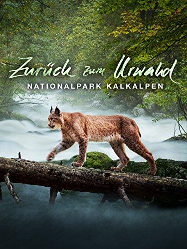 Prime Zurück Video (Zurück zum Urwald - Der Nationalpark Kalkalpen )