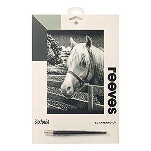 Reeves - Creatividad - Tarjeta de Raspar - Medio, plata - Poni